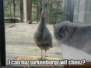 I can haz turkeeburgr wif cheez?