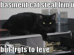 basment cat steal frm u  but frgts to leve