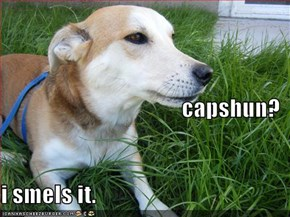 capshun? i smels it.