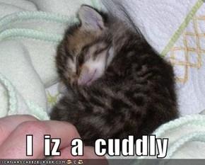 I  iz  a  cuddly