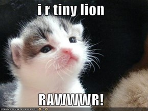 i r tiny lion  RAWWWR!