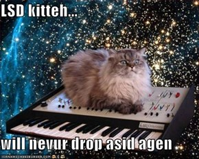 LSD kitteh...  will nevur drop asid agen
