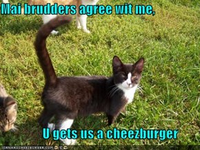 Mai brudders agree wit me,                  U gets us a cheezburger