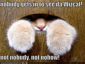 nobudy gets in to see da Wizcat!  not nobudy, not nohow!