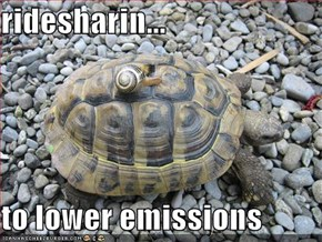 ridesharin...  to lower emissions