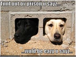 Tnnl out ov prison u sayz...  ...wuld be eazy u sayz...