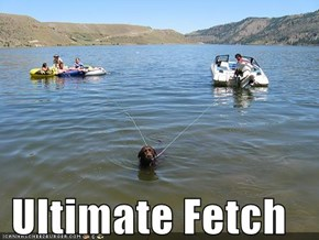Ultimate Fetch