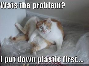Wats the problem?  I put down plastic first....