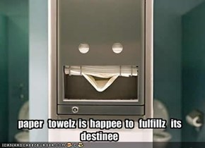 paper   towelz  is  happee  to   fulfillz   its   destinee