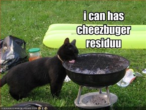 i can has cheezbuger 