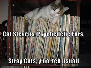 Cat Stevens, Psychedelic Furs, Stray Cats, y'no, teh usuall