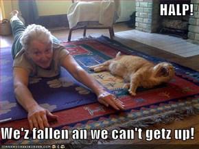 HALP!  We'z fallen an we can't getz up!