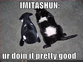 IMITASHUN:   ur doin it pretty good