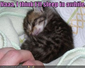 Naaa, I think I'll sleep in awhile.