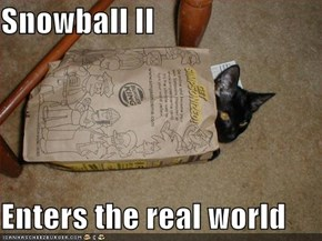 Snowball II  Enters the real world