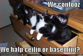 We confooz  We halp ceilin or basemint?
