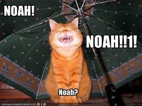 NOAH!