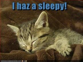I haz a sleepy!
