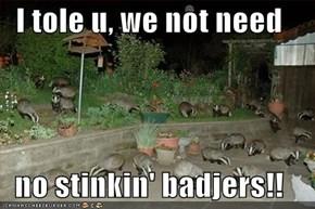 I tole u, we not need  no stinkin' badjers!!