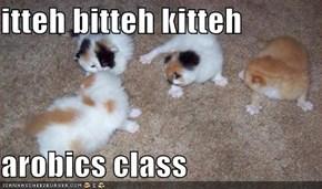 itteh bitteh kitteh   arobics class