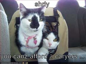 shrly   you canz afford 2 caryers ...