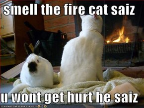 smell the fire cat saiz  u wont get hurt he saiz