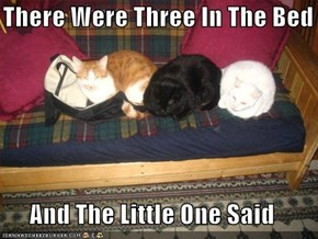 There Were Three In The Bed  And The Little One Said
