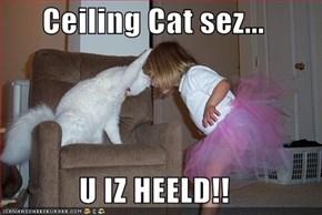 Ceiling Cat sez...  U IZ HEELD!!