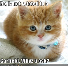 No, Iz not related to a  Garfield. Whyz u ask?