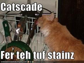 Catscade  Fer teh tuf stainz