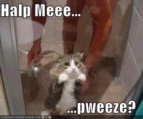 Halp Meee...  ...pweeze?