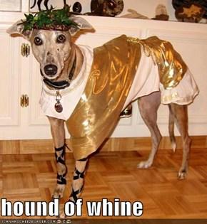 hound of whine