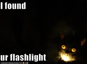 I found  ur flashlight