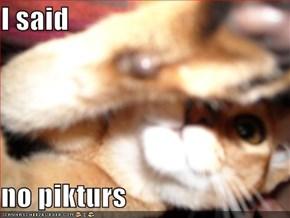 I said  no pikturs