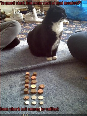 'is good start, but wear rest of mai monies?'  loan shark cat comes to collect