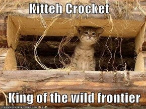 Kitteh Crocket     King of the wild frontier