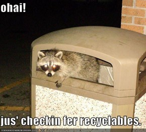 ohai!  jus' checkin fer recyclables.