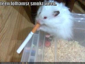 teen lolhamsr smokz weed.