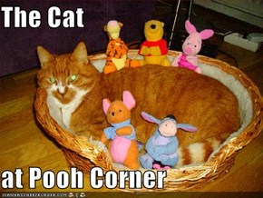 The Cat  at Pooh Corner
