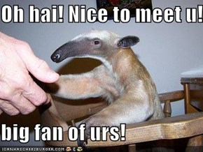 Oh hai! Nice to meet u!  big fan of urs!
