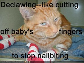 Declawing--like cutting off baby's            fingers to stop nailbiting
