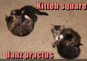 Kitteh square     danz practus