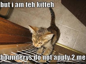 but i am teh kitteh  bounderys do not apply 2 meh