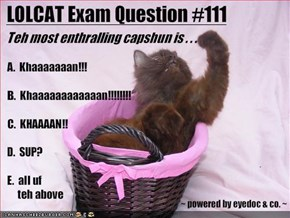 LOLCAT Exam Question #111
