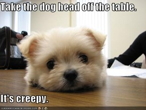 Take the dog head off the table.  It's creepy.