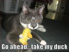 Go ahead...take my duck