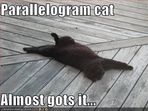 Parallelogram cat  Almost gots it...