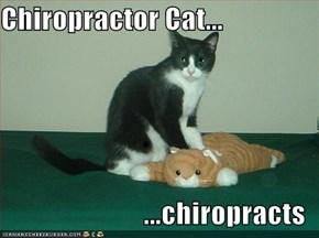 Chiropractor Cat...  ...chiropracts