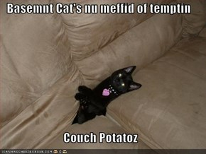 Basemnt Cat's nu meffid of temptin  Couch Potatoz