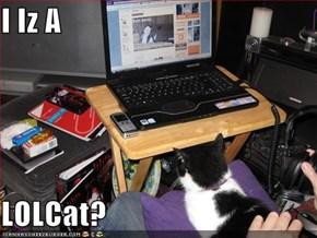 I Iz A  LOLCat?